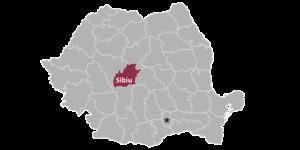 Software development company Sibiu