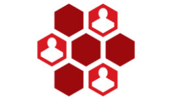 intranet and web portal development